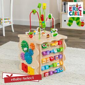 EricCarle(エリックカール) はらぺこあおむし マルチアクティビティキューブ おもちゃ 知育玩具