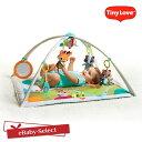 TinyLove(タイニーラブ)ジミニーデラックス イントゥザフォレスト