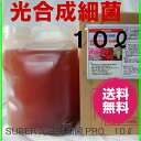 SUPER 光合成細菌 PRO 10リットル