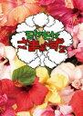 さまぁ〜ず/モヤモヤさまぁ〜ず2 DVD−BOX(VOL.26、VOL.27)