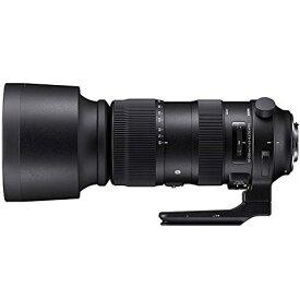 シグマ 60-600MM F4.5-6.3 DG キヤノンEFマウント用