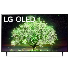 LGエレクトロニクス OLED48A1PJA 4K有機ELテレビ 48V型 4Kチューナー内蔵