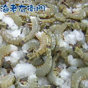 超特大サイズ 約48本入り 活〆ブラックタイガー 無頭えび 900gブロックが二つ入っています。冷凍えび 海老 エビ 900g(約20-25尾)美味しい海老 美味しいエビフライ