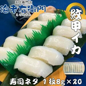 海老右衛門 厳選寿司ネタ 紋甲イカ8g寿司ネタ 長さ約8センチ モンゴイカ いか もんごいか すしネタ 海鮮丼 刺身