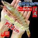 長さ23センチ級!天然有頭シータイガーえび 1.5kg 18尾サイズ 海老 エビ 冷凍えび ゆうとう バーベキュー 美味しい海…