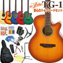 アコースティックギター 初心者 ハイグレード 16点 セットARIA TG-1 カッタウェイタイプ アコギスタートセット 【アウ…