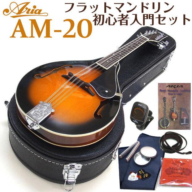マンドリン ARIA アリア AM-20 初心者 10点セット フラットマンドリンで始める初心者セット!【送料無料】