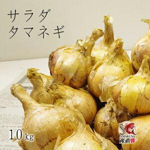 送料無料 玉ねぎ 10kg 完全無農薬 こだわり農法 サラダたまねぎ10kg オーガニック栽培 サラたま ギフト M〜2Lサイズ混合