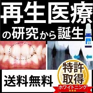 口コミから大ヒット♪【送料無料】ポリリンホワイト EX 医薬部外品 薬用歯磨き 内容量19mL 1本_※約1ヶ月分 歯磨きポリリン酸配合 口臭対策 ホワイトニング WHITENING トゥース リジェンティス
