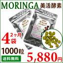 Moringa03_01