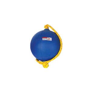 ニシ トレーニング用品 スウィングメディシンボール 3kg T5913 ブルー nishi t5913 swing medicine 3kg