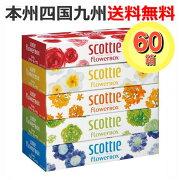 スコッティフラワーボックスティッシュ1ケース[60箱:1パック(5箱入)×12]