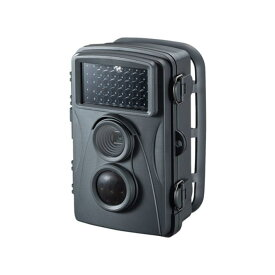 【送料無料】SANWA SUPPLY サンワサプライ 暗闇でも撮影できる赤外線センサー内蔵のセキュリティカメラ CMS-SC01GY CMSSC01GY