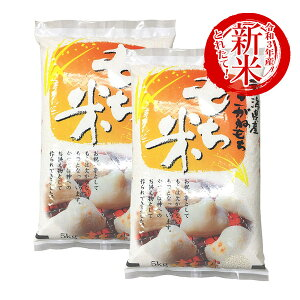 令和3年産 新米 もち米 10kg 新潟県産こがねもち お米 送料無料 5kg x2袋