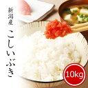 米 10kg こしいぶき 令和2年産 お米 送料無料 精米 白米 新潟県産