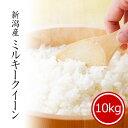 米 10kg ミルキークイーン 新潟県産 お米 送料無料 令和2年産 精米 白米