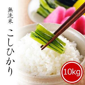 米 10kg 無洗米コシヒカリ 新潟県産 お米 送料無料 令和2年産米 精米 白米