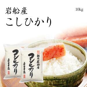 米 10kg コシヒカリ 岩船産 お米 送料無料 5kg x2袋 特A米 新潟県産 こしひかり 令和元年産