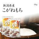 【もち米】新潟産こがねもち 10kg 新米 / 令和元年産 5kg x2袋 送料無料
