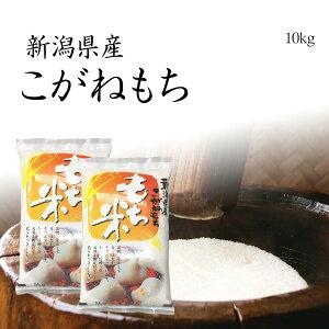 【もち米】新潟産こがねもち 10kg / 令和元年産 5kg x2袋 送料無料