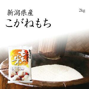 米 もち米 2kg 新潟県産こがねもち お米 令和元年産