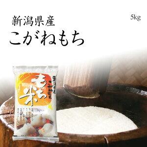 【もち米】新潟産こがねもち 5kg / 令和元年産 送料無料