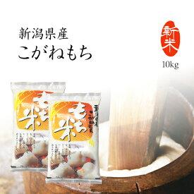 もち米 10kg 新潟県産こがねもち お米 令和2年産 送料無料 5kg x2袋