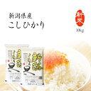 新米 10kg コシヒカリ 新潟県産 お米 送料無料 令和2年産 精米 白米