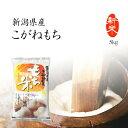 【新米】もち米 5kg 新潟県産こがねもち お米 送料無料 令和2年産