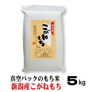 令和3年産 もち米 5キロ 新潟 こがねもち 5kg 真空パック 米