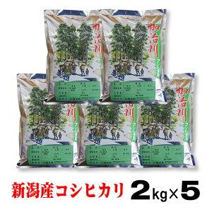 新潟 コシヒカリ 10kg (2kg×5)米 こめ 2キロ 小分け 2k 新潟県産 こしひかり 10キロ