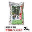 新潟産コシヒカリ 3kg 5000円の半返し 米 ギフト 2500円くらい