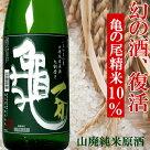 いちやまか亀山廃純米原酒1.8L塩川酒造日本酒新潟純米酒山廃仕込み【楽ギフ_のし】