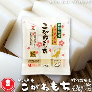 [新潟餅 切り餅 国産] 新潟県産こがねもち 特別栽培米 切り餅ケース 4.2kg (350g×12袋入) 新潟県産こがねもち米100% たいまつgift kome niigata koganemochi made in japan taimatsu