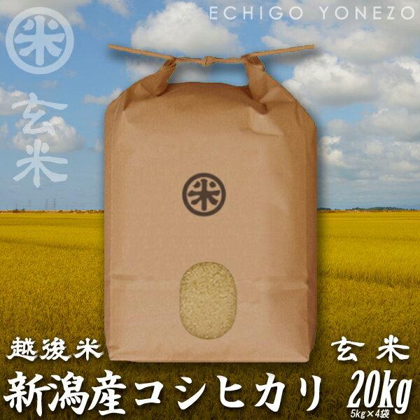 [新米29][あす楽][越後蒲原][こしひかり][米] 新潟産コシヒカリ 玄米 新潟定番 玄米 20kg (5kg×4袋) ][厳選新潟米] 送料無料/贈答/内祝/御祝/御中元/御歳暮 gift/kome/niigata/koshihikari/japonica/rice