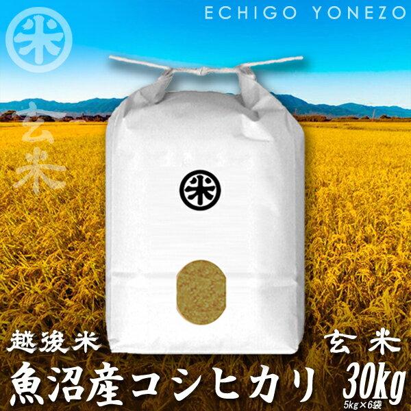 [新米30][あす楽][玄米] 魚沼産コシヒカリ 玄米 新潟大銘米 玄米 30kg (1袋/5kg×6袋) [厳選新潟米] 魚沼]/こしひかり/送料無料/贈答/内祝/御祝/御中元/御歳暮 gift/kome/grain/brown rice/uonuma/koshihikari