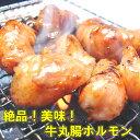 【送料無料】牛丸腸ホルモン(味付けなし)500g 焼肉・モツ鍋にどうぞ!【B級グルメ】