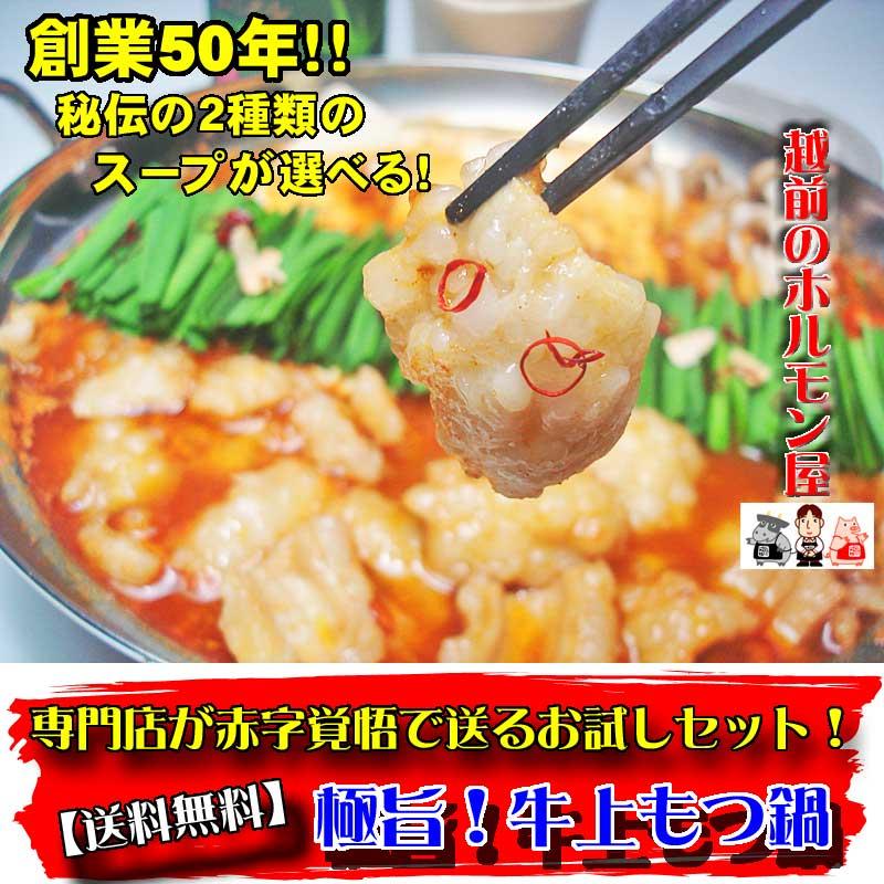 【送料無料】秘伝のスープが選べる!極旨!牛上もつ鍋お試しセット!