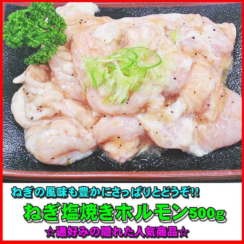 ねぎ塩焼ホルモン 500g【B級グルメ】 【バーベキュー】【焼肉】【肉の日】【父の日】【お中元】【お歳暮】【RCP】