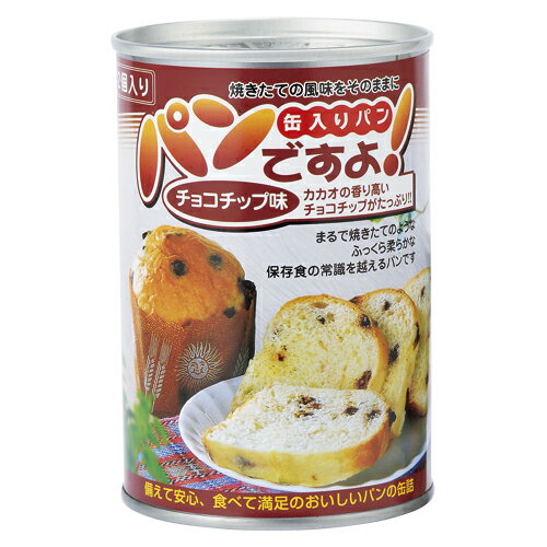 名古屋ライトハウス パンですよ!5年保存 チョコチップ味(2051) 100g