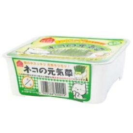 ヤマヒサペットケア事業部 ペティオ (Petio) 猫の元気草125g