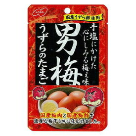 ノーベル 男梅うずらのたまご 38g【単品】