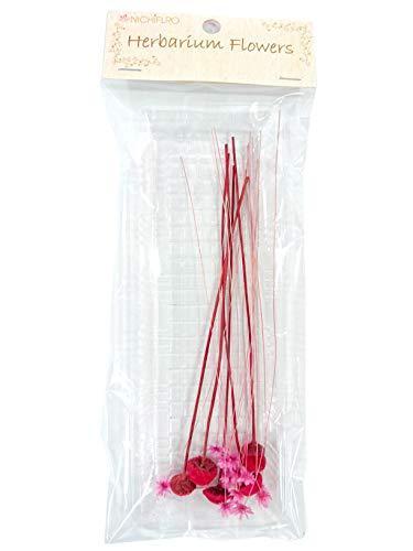 ニチフロ(Nichiflro) ミニフラワーMIX ピンク