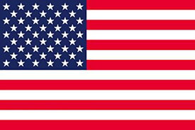 のぼり屋工房 N国旗 アメリカ L版 W750×H500mm 22818 (1489147)【smtb-s】