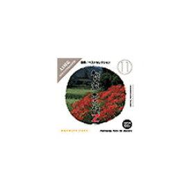 イメージランド 創造素材Z (11) 四季/ベストセレクション [Windows/Mac] (935578)【smtb-s】