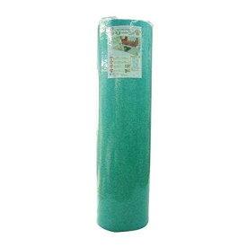 奥特殊紡績 ペット用品 ディスメル クリーンワン(消臭シート) 60×90cm グリーン OK699 (1351213)
