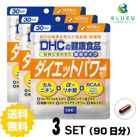 【送料無料】 DHC ダイエットパワー 30日分(90粒) ×3セット