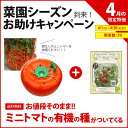 【4月特別セット】ミニトマトの有機の種付!水耕栽培キット ホームハイポニカ601 ハイポニカ肥料付