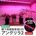 棚下用植物育成 LED アングリラ2 LEDライト スリムでマグネット付