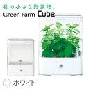 水耕栽培器 Green Farm Cube グリーンファーム キューブ(ホワイト) ※お試し種子キット別送 インテリア としても楽しめるコンパクトなL…
